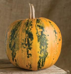 Kaikai Pumpkin